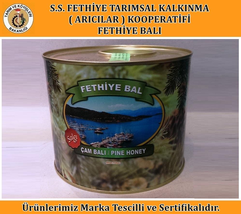 Salgı Çam Balı (3 Kg)