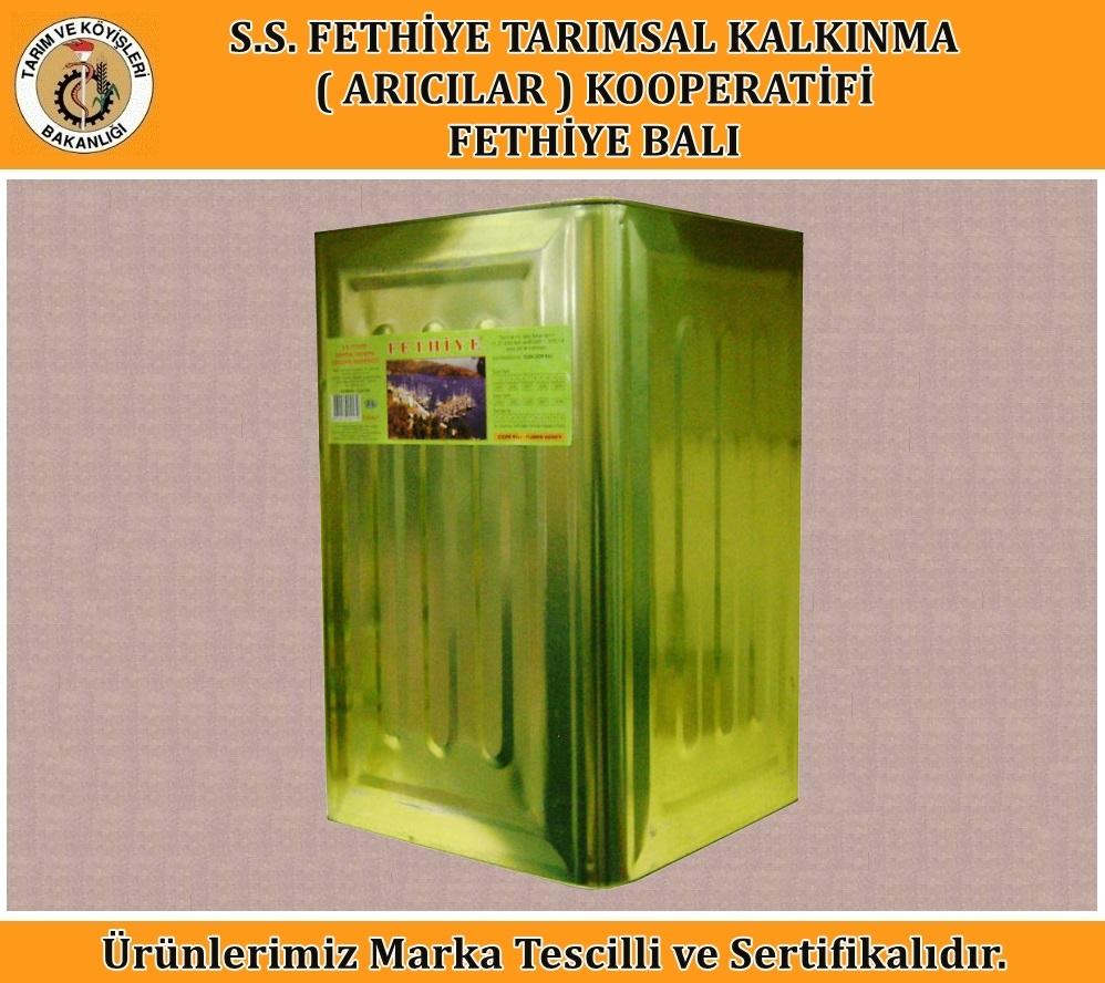 Salgı Çam Balı (27.5 Kg)